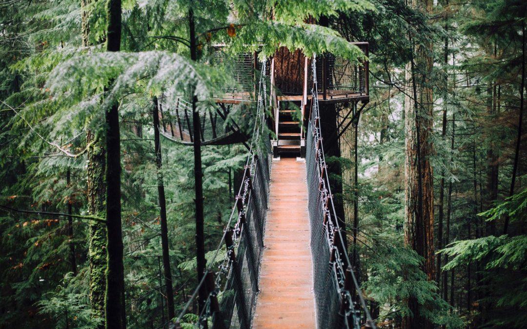 Comment choisir un hébergement écologique et insolite ?