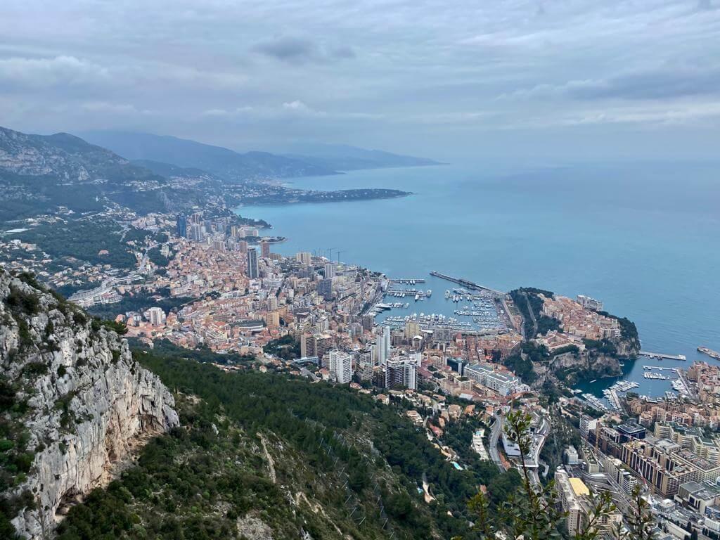 Monaco - point de vue de la tête du chien
